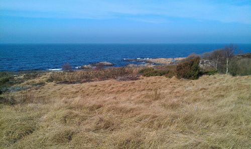 rocks sea bornholm