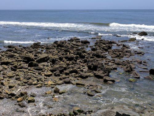 Rocks In Low Tide