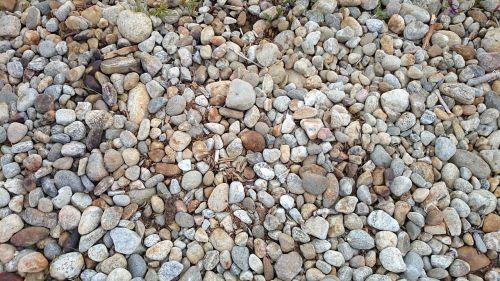 rocky kojanlahti finnish