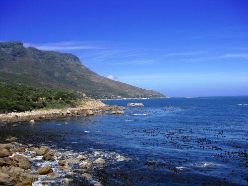 Rocky Cape Coastline