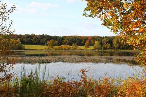 rodder maar autumn leaves