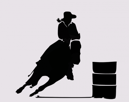 rodeo western cowboy