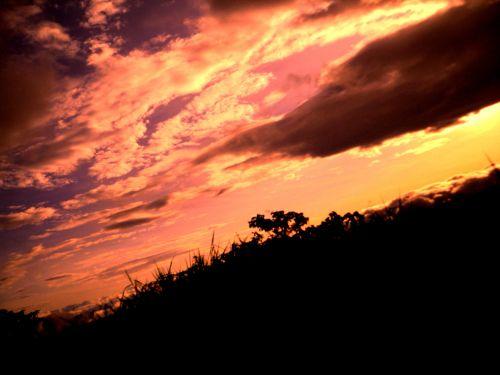 Reddish Landscape