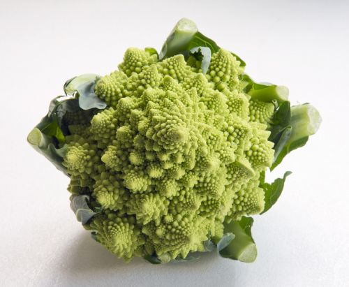 romanesca cauliflower vibrant green unusual vegetable
