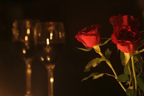 romantic dinner  roses  valentine