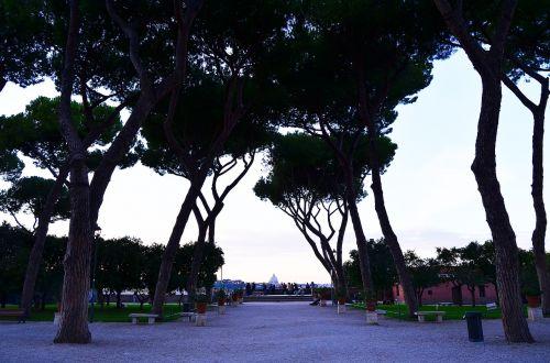 Roma,alėja,parkas,medžiai,trasa,stendas,spygliuočių medis,miestas,saulė,gamta,saulėlydis,kelionė,kraštovaizdis