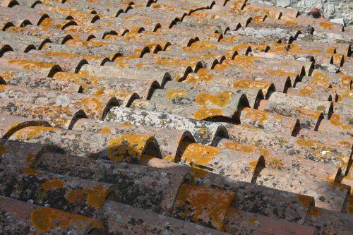 roof tiles chapman