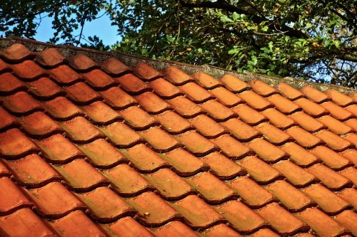 roof tiles roof tile