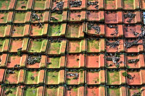 roof tiles tiled roof