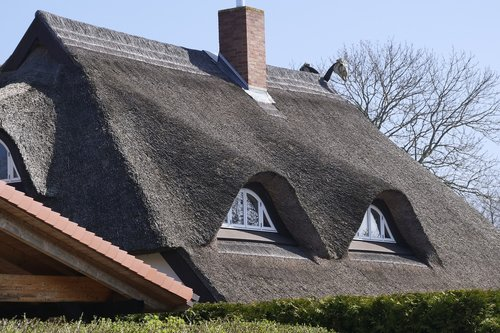 roof  thatched roof  thatched