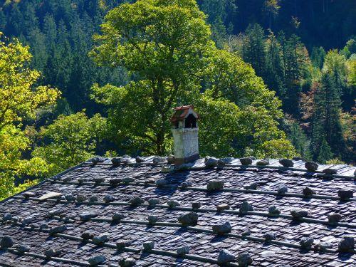 roof shingle roof stone