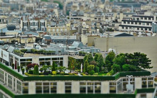 roof terrace roof garden architecture