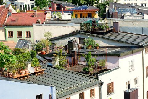 roof terrace terrace roof garden