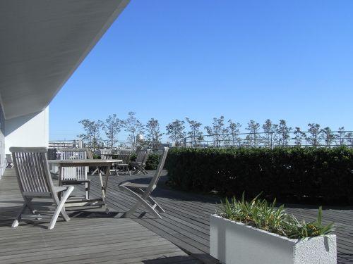 rooftop greening terrace sunshine