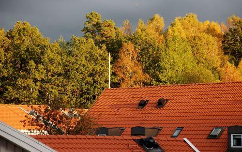rooftops himmel autumn