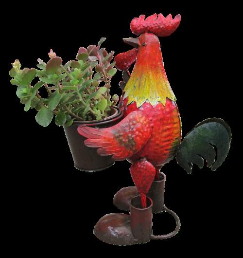 rooster planter garden