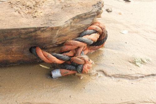 rope washed ashore fundus