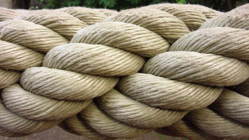 ropes twisted dew