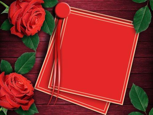 rosa  love  gift
