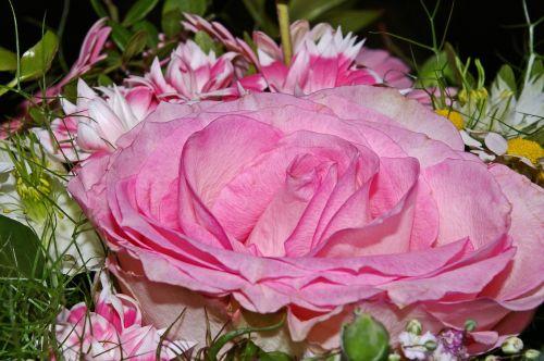rose bouquet flowers