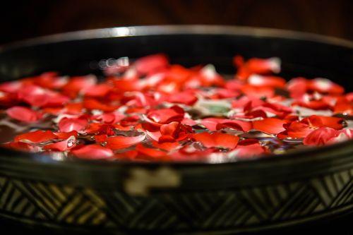 rose petal bronze vessels