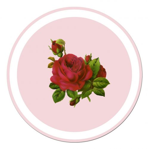 rose red rose sticker