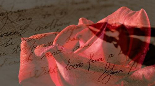rožė,raudona,Raudona roze,meilės laiškas,rankraštis,plunksna,Parkeris,meilė,romantika,romantiškas,fonas,fono paveikslėlis,tekstūra,modelis,žiedas,žydėti,raudona gėlė,Valentino diena,nuotaika,atmosfera