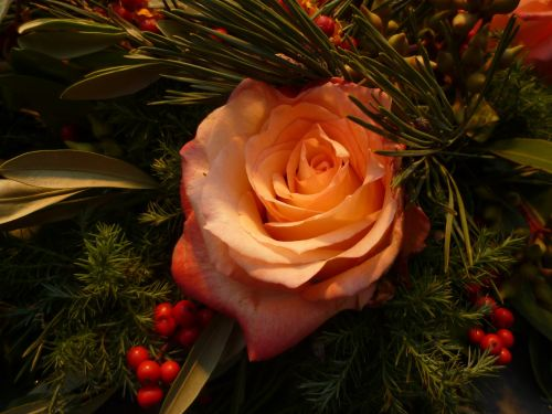 rose christmas bouquets
