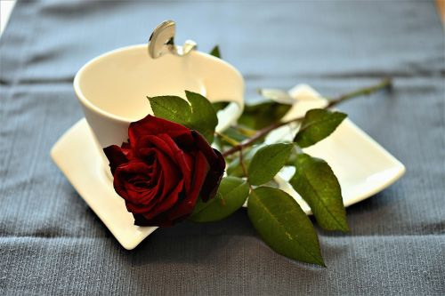 rose coffee cup cover