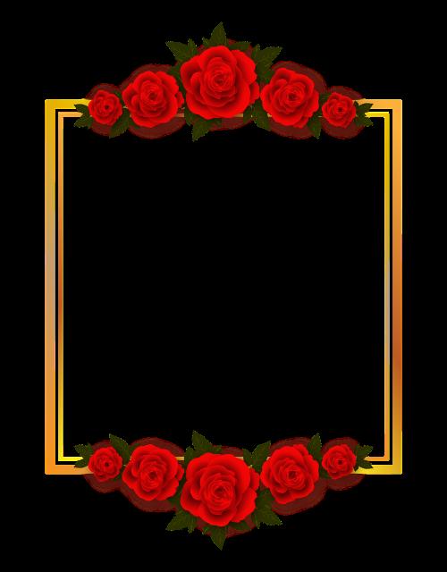 rose flowers plate
