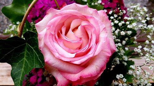 rose  bouquet  birthday