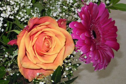 rose birthday bouquet gypsophila