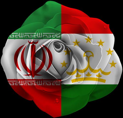 rose  iran  tajikistan