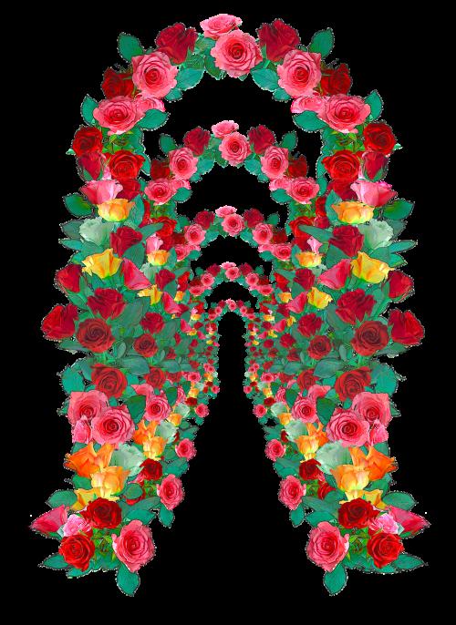 rose arch rose arches rose trellis