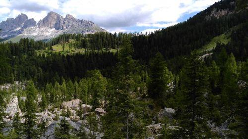 rose garden alpine rock massif
