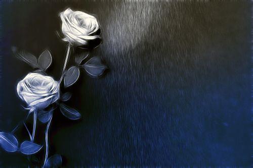 Rose In Pose 41
