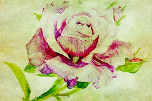 Rose Vintage Painting