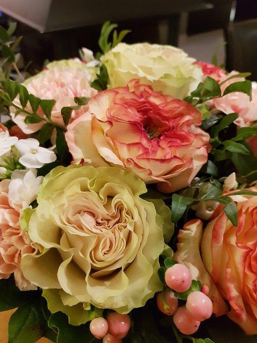 rosebush  flower  wedding