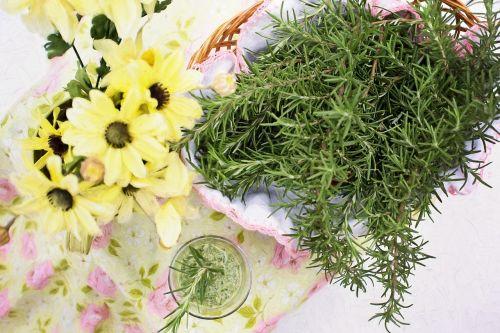 rosemary herb food
