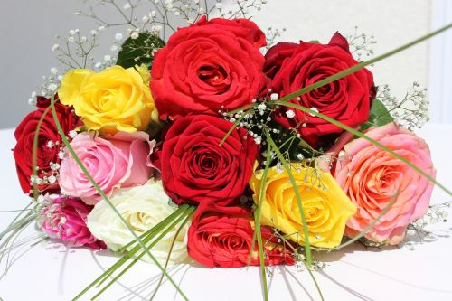 roses flowers bouquet