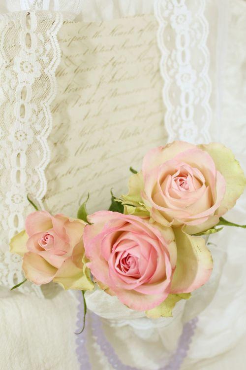 roses romantic invitation