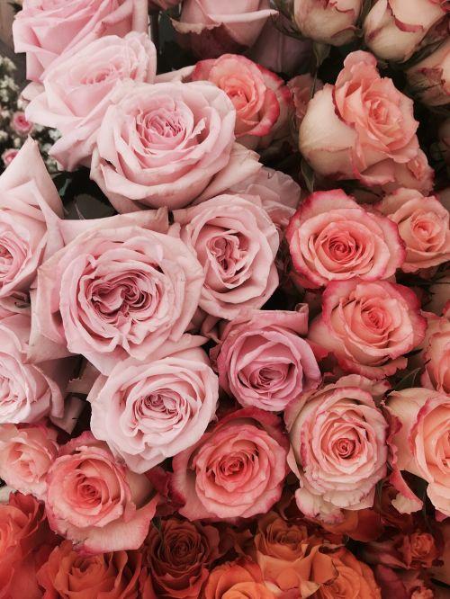 roses flowers wedding