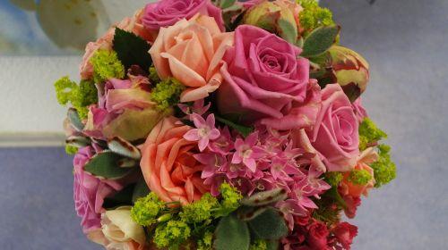 roses tender pastel color