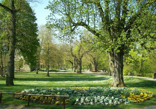 rotenburg trees garden