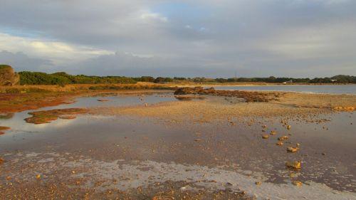 rottnest sala,sala,australia,rottnest,ištemptas,įėjimas,Vakarų Australija,perth