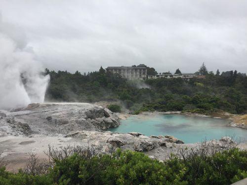 rotorua new zealand geyser