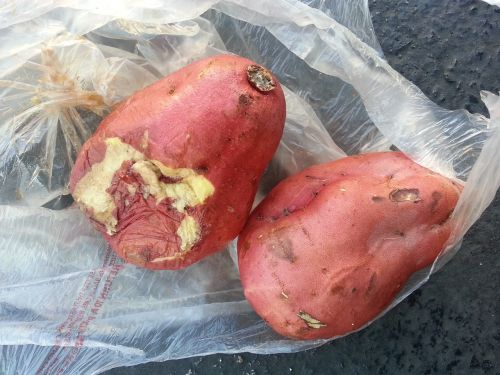 rotten sweet potatoes japan market exchange is not