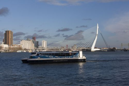 rotterdam mesh erasmus bridge