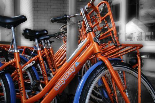 rotterdam cycling bicycle rental