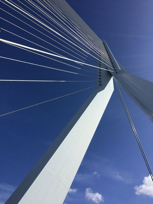 rotterdam erasmus bridge blue sky